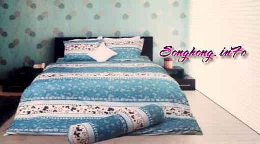 Chăn ga gối dòng Classic mã C14 - C16, vải cotton cho giường 1.8 x 2m