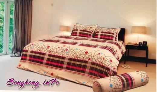 Chăn ga gối dòng Classic mã C14 - C17, vải cotton cho giường 1.8 x 2m